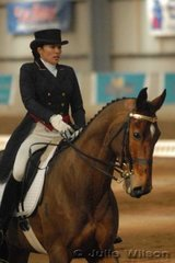 Analisa Hegyesi from NSW rode her warmblood gelding by Wolfgang, Wynella Wolverine to score 53 and hold over night fourth position in the CCI**.