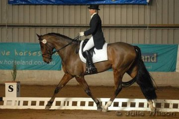 Victorian, Meg Ferguson and her Clydesdale X ,Conspiracy Theory scored 64.6 in the CCI**.