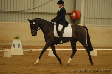 Rachel Watts and her TB, Jubilee, scored 63.6 in the dressage phase of the CCI*.