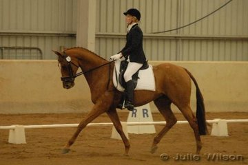 Danielle Cleland from NSW rode her TB gelding Sum and Substance, to score 68.8 in the CCI* dressage section.