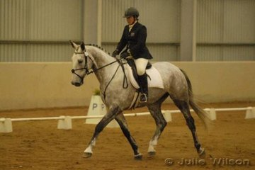 Cindy Morrison rode her mother, Yvonne Morrison's WB/TB by Daley K, Raymond K in the CCI* dressage for a score of 58.1.