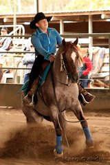 Easta Lena & owner/rider Cristina Horton competing in the Robertson's Fabrications Rookies event.