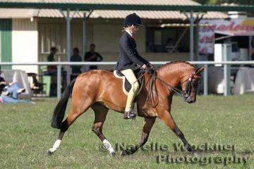 Winner of Pony over 12hh n/e 12.2hh 'Cheraton Serendipity' ridden by Amylee Holborn-Quirk