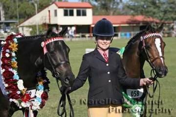 A double win for Kirsty Harper-Purcell with her Champion Younstock Of The Year 2007 'Kolbeach Stilletto' and Reserve Champion 'Kolbeach Finest'