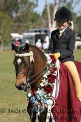 Bridgette Chalmers rode 'Lakevale Silver Leige' to win Champion Intermediate Small Pony