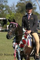 Adam Oliver rode 'Willowcroft Regal Rhymes' owned by Wendy Roger Claxton to win Champion Intermediate Large Pony