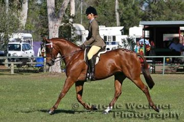 Working out to win Reserve Champion Owner Rider Large Galloway Of The Year Katika Lipp and 'Helden Park Ransom'