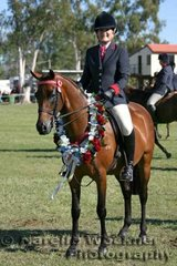 Champion Owner Rider Small Galloway Of The Year 'Tremayne Gold Edition' ridden by Tova Squires