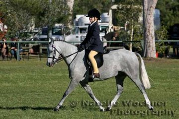 'Weston Park Vermouth' ridden by Claudia Greve won Reserve Champion Intermediate Small Pony