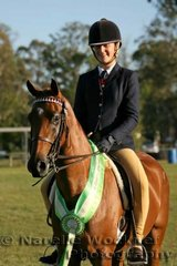 Tori Eagles and her Champion Owner Rider Small Galloway Of The Year 'Whitmere World Cup'