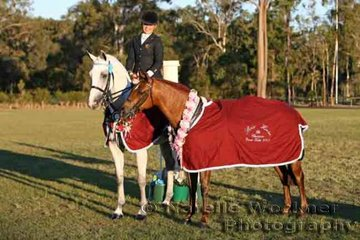 Ashley Harris had a winning twosome with Champion Owner Rider Large Hack Of The Year on left and 'McArthur Park Mystic' on right who was Champion Owner Rider Small Galloway Of The Year