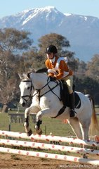 Elliot Kenealy and 'Shadow' from Wangaratta Pony Club during their Group 4A jumping round with Mt Buller in the distance.