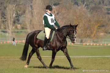 Kate Babidge from the Kergunyah Pony Club rode her 'Sambucca'. pictured here in the dressage phase, to take second place in the Grade 4B competition.
