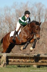Kate Rowe and 'Helium' look full of running on their way to third place in Grade 4A for the Moyhu Pony Club.
