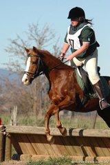 Ezra Lonergan rode 'Warrawee' for the Kergunyah Pony Club to take fourth place in Grade 4A.