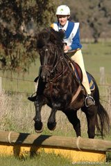 Victoria Wetherall and 'Crash' took third place in Grade 5A for Mansfield Pony Club.