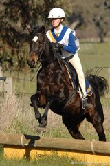 Emily Thompson and 'Ripponlea Star of Heaven' demonstrate the lovely style that saw them take out the Grade 5A competition for Mansfield Pony Club.