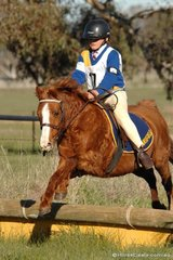 Danald Ritchie and 'Cotton' took second place inthe Grade 5B competition for Mansfield Pony Club.