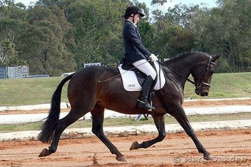 Spanish Illusions & Kerrie Stacey were competitors in the Elementary 3.2.