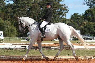HP Lothar & Danielle Campbell were competitors in the Advanced 5.2.