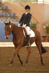 Jennifer Darmondy rode Wynella Tom Tom to eigth place in the Dressage NSW Scholarship Riders 16 years and over.