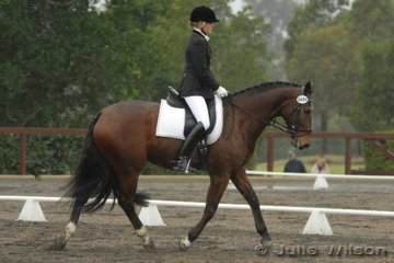Jocelyn Hutton and Kinnordy Ricorso competed in the Hamag Preliminary 1.4.