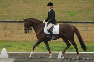Saskia Small rode GB Moonlight for sixth place in the Hamag Preliminary 1.3 with 61.60%.