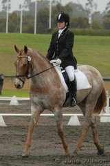 Katie Antunes rode Rilet's Gift in the in the Hamag Preliminary 1.3.