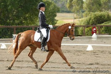 Casey Strickland rode her Riding Pony, Willowcroft Regal Cottage to fifth place in the Ride In Style Pony 3.3.