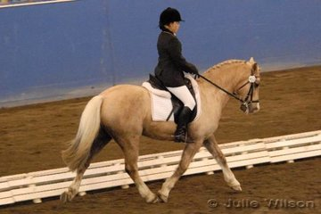 Brianna McColl rode Niscinda Mr President to eigth place in the dressage NSW Scolarship for riders 15 years and under.