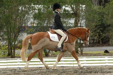 Kelsey Szczepanik from the ACT rode Abergowrie Cherry  in the International Animal Health Pony Preliminary 1.3.