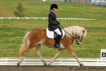 Angelie Churchill rode her delightful Haflinger mare, Arkley Marlena for fifth place in the International Animal Health Pony Preliminary 1.3 with 68.20%.