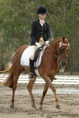 Sarah North rode her Riding Pony, Royalwood Gift by Syon Royal Portrait in the Pony Preliminary competition..