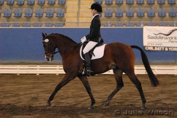 Casey Strickland and her Riding Pony Rathowen Rustic by Courtland Boy Blue (Imp)  in the Australian Warmblood Horse Association NSW Branch FEI Junior Individual.
