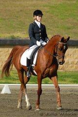Cassandra Brett rode her Arabian gelding Jaytee Desert Flare by Arjai Summit in the Agnes Banks Novice 2.4.