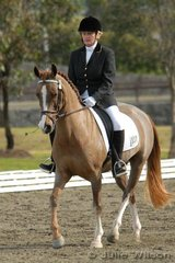 Joan Morrison_Swan rode Southern Whisky Jack in the NSW State Pony Championships Novice EFA 2.4.