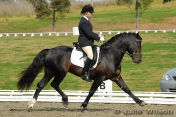 Claire Wickins rode Hillswood True Magic to win the NSW State Pony Championships Novice EFA 2.3 with a score of 70.6%.