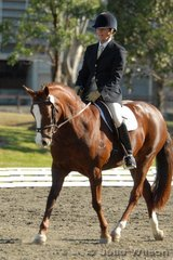 Susan Low rode Country Delight in the NSW State Pony Championships Novice EFA 2.3.