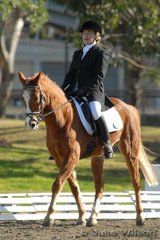 Kerrie Schebesta and wattle Montague competed in the NSW State Pony Championships Novice EFA 2.3.