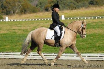 Brianna McColl rode Niscinda Mr President in the NSW State Pony Championships Novice EFA 2.4.