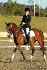 Robbie Soster rode Robali Royal Salute in the Horze Australia Medium 4.4.