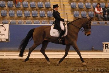 Kylie Gribble and Dabrijo Merlin competed in the Australian Warmblood Horse Association FEI Young Rider Freestyle.