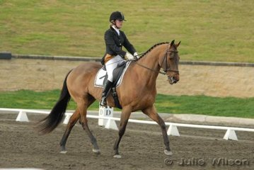 Charlotte Hanson and Big Risk competed in the Crispin Bennett International Horse Transport Elementary 3.4.