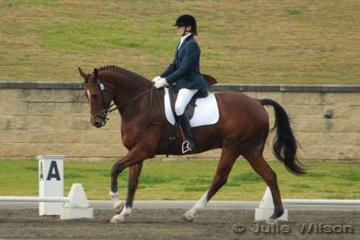 Jade Hamilton rode the Jive majic gelding Java to win the Crispin Bennett International Horse Transport Elementary 3.3 and take third place in the 3.4 enough for them to win the title of Elementary Champion.