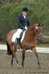 Maddi Colquhoun rode Congarinni Royal Sovereign in the NSW State Pony Dressage Championships Elementary EFA 3.4.