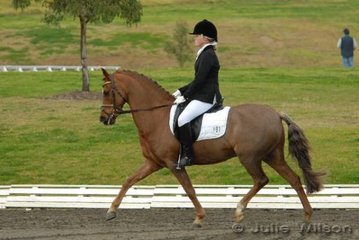 Katherarine Farrell and Owendale Lemon Twist competed in the NSW State Pony Dressage Championships Elementary EFA 3.4 to take sixth place.