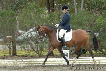 Peta Cormack had a busy weekend with her two ponys. Here Peta rides Tinela Lodge Baskare to win the NSW State Pony Dressage Championships Elementary EFA 3.4.