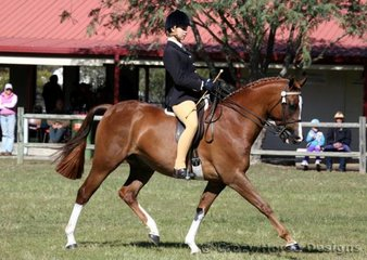Brooke Skennerton rode CL Opening Ceremony in the Ridden Galloway Class