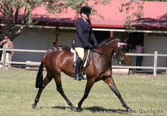 Kelly Bond & Confusions of Rathowen were Reserve Champions in Ridden Galloway