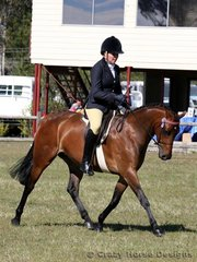 Zoey Topcov road Kolbeach Emerald to a 5th place in the Ridden Galloway class